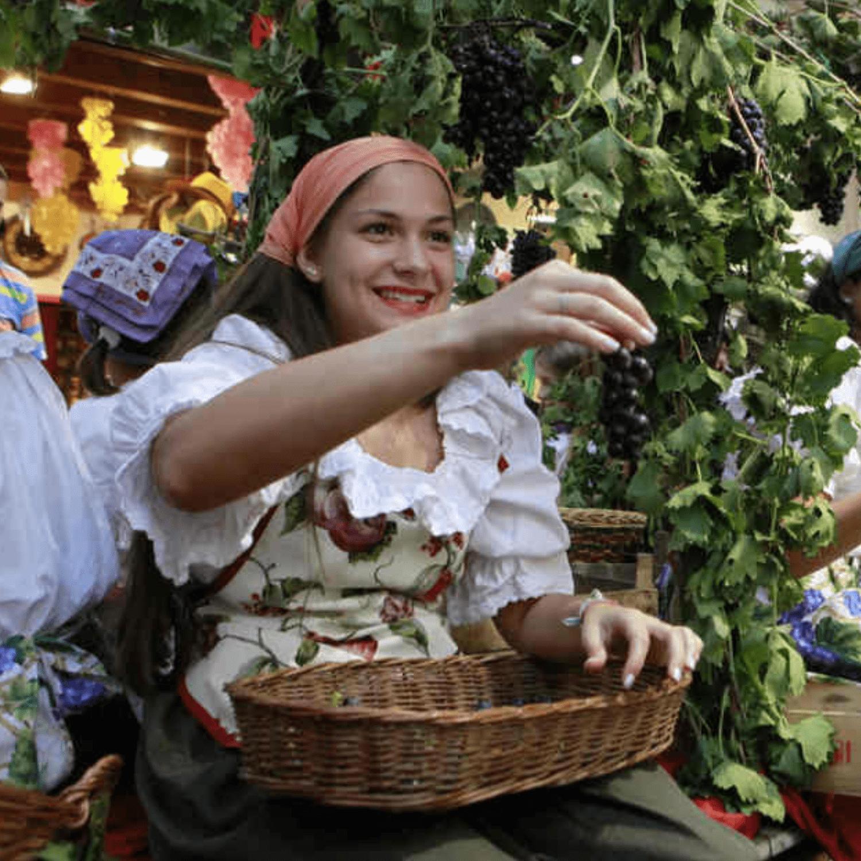 Festa del Vino Bardolino